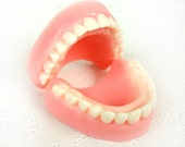 Nom Noms - Teeth Soap - 2pack