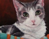"""KittyLove, custom Pet Portrait Oil Painting by puci, 10x12"""""""