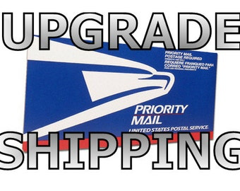 UPGRADE to EXPRESS SHIPPING -  Overnight delivery in the United States