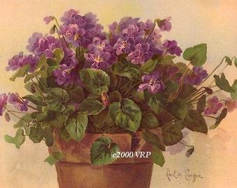 Exquisite Victorian Violets Print Paul de Longpre Half Yard Long Violet Flower