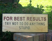 Wood sign For Best Results try not to do anything stupid