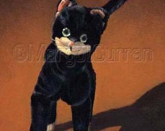 Cat postcard 6-pack