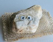 Pet rock wearing glasses with funny natural smile and burlap pillow bead