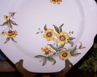 Vintage Collectible Deep Bowled Plate from Alabama