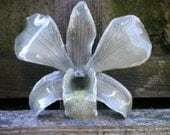Free Shipping REAL Natural Soft Grey ORCHID Pin and Pendant
