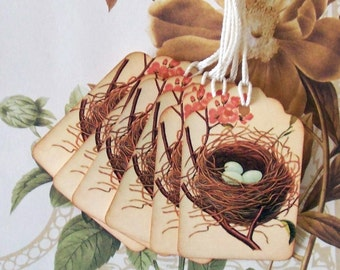 Tags Wish Tree Party Favor Gift Tag Bird Nest Eggs Vintage Style Treat Bag Tags T053