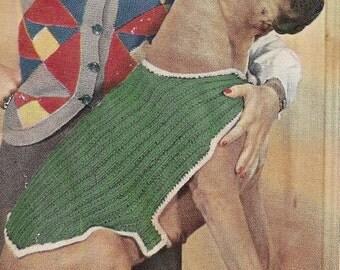 Large Dog Coat Vintage Pattern 089