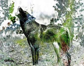Southwestern Howling Wolf Art, Digital Print, Native American Totem Animal, Wolves Home Decor, Green Blue Wall Hanging, Giclee Print, 8 x 10