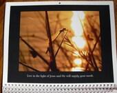 2016 Dragonfly Calendar Photography by Cheri  Street