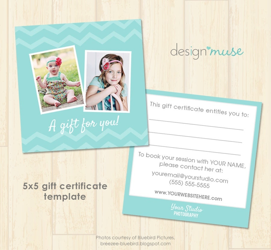 Photography gift certificate psd template by birchandivydesign for Gift card template psd