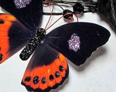 Butterfly Embellishments Sleepy Hollow