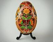 Sunflower Blossom Ukrainian Goose Pysanka - Real Traditional Ukrainian Goose Egg with sunny sunflowers