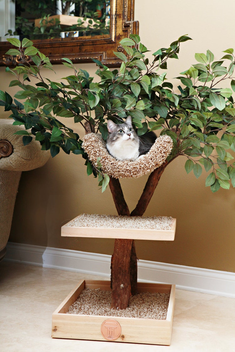 Seedling Cat Tree By Pettreehouses On Etsy