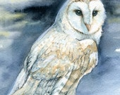 Ghost Owl - Barn Owl Print of Original Watercolor