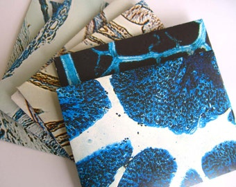 Envelopes recycled biology microscope images.  Vintage blue and black recycled papers.   Set with writing paper.