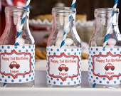 Cars Themed Water Bottle Labels - Car Party Decorations in Red and Blue (12)