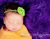 Lime Green Shabby Chic Chiffon Fabric Skinny Elastic Headband - Baby Toddler Girl Photography Prop Vintage