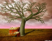 THE SILO TREE...16X20 matted fine art giclee print / photograph collage
