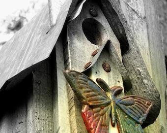 Butterfly Birdhouse 5x7