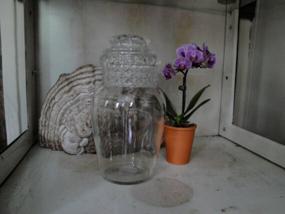 Vintage glass apothecary candy jar