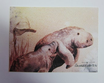 Manatees Mother's Love ACEO watercolor print 834 Artist Trading Card pink peach Florida