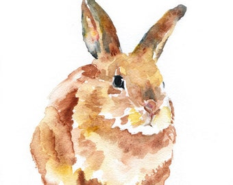 Watercolor Painting Bunny Rabbit Giclee Print 8x10 - 8.5 x 11