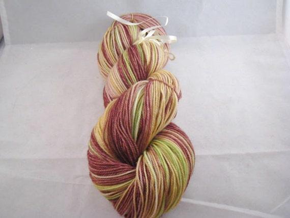 Superwash Merino Cashmere Nylon Handpainted Sock Yarn Fingering Weight - Briar Patch