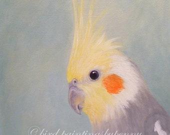 Cockatiel painting FASCINATOR II 8 x 10 parrot painting