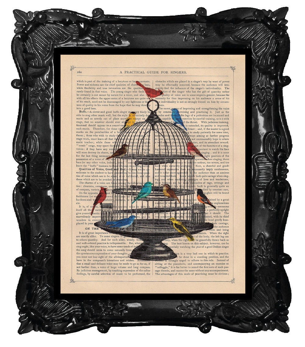 Antique bird cage drawing - photo#54