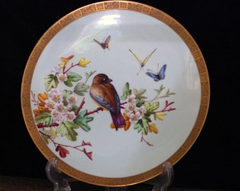 English Porcelain Hand Painted Bird Plate James Green Nephew
