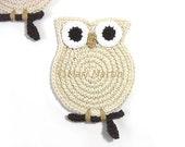 Crochet Coasters Owl Cream Country Weeding Gift Teachers Tea Bone Shabby Chic Home Decor Set of 2 Made to order