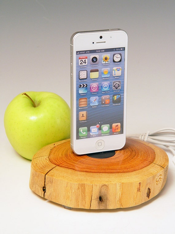 iphone 5 docking station ipod touch 5 dock 300 use your own. Black Bedroom Furniture Sets. Home Design Ideas