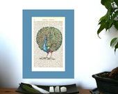 Beautiful Peacock Vintage Art Print on Antique 1896 Dictionary Book Page
