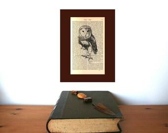 Barn Owl Medium Art Print on Antique 1896 Dictionary Book Page