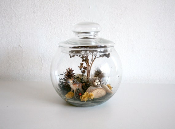 RESERVED FOR AMANDA Vintage Terrarium