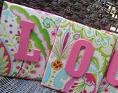 Wall Letters, 8x10 Framed Monogram, Kumari Garden, Teja Pink, Painted Letters, Wood Letters, Personalized, Monogram