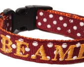 Dog Collar - Virginia Tech colors - personalized