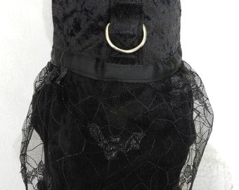 Custom Fancy Black Velvet Gothic Web Lace w/ Bats Halloween Harness Dress. Perfect for your Cat, Dog or Ferret.