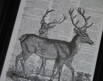 Deer Art Print Dictionary Print Dictionary Art Book Page Print Upcycle 8 x 10 Vintage Dictionary Two Deer