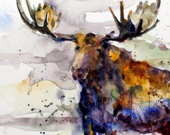MOOSE Watercolor Print by Dean Crouser