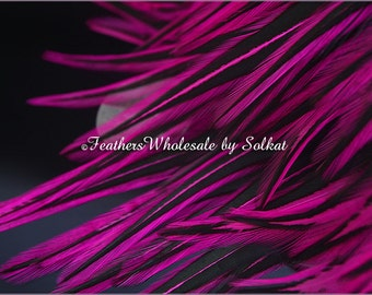 Pink Craft Feathers Wholesale Laced Rooster Saddle Hackle Feather Plumes Jewelry Making Feathers Craft Hot Pink Black Feathers, 12