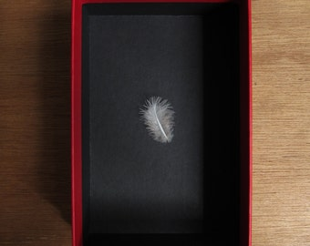 Life's GOOD in PANDORA'S BOX original feather readymade 10cm x 15cm x 5cm