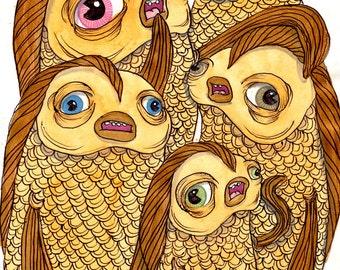 5 Goldfish