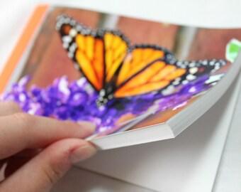 Notebook/Sketchbook/Journal - 4x6 - Monarch Butterfly - Original Photograph
