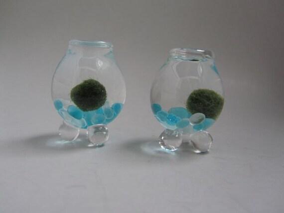 Handblown Miniature Glass Marimo Moss Ball Habitats