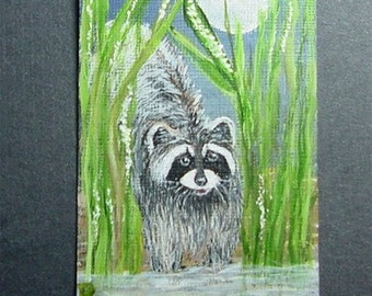 Aceo Painting  Raccoon  Night Spirit Free Shipping