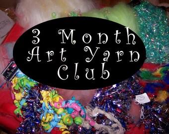 Art Yarn Club - 3 months, One Handspun Art Yarn Skein per Month