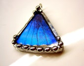 Blue Butterfly Pendant, Real Butterfly Necklace, Blue Morpho Butterfly