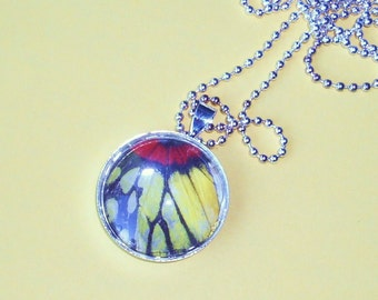 Real Butterfly Wing Pendant  BF10