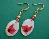 Flower Earrings Real Flower Dangle Earrings Resin Shell Beads Gold